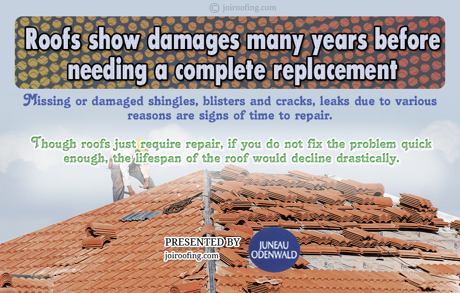 Roof Maintenance Infographic